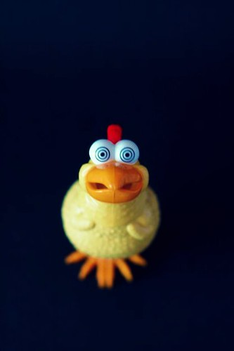 *insert chicken noise here* - by KayVee.INC - Flickr