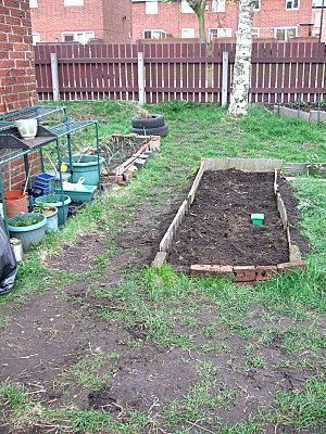 Bed 1 - all dug out, the sides replaced. Just need to sort the soil out now.