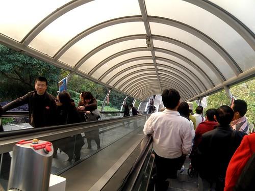 escalator down