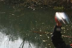Die Flugwasserung