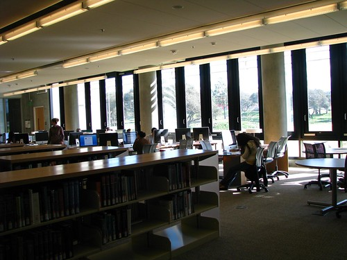 pollyalida, Study area