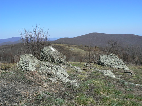 Backpacking - Friday - Cold Mountain - Blazed Rock and Trail