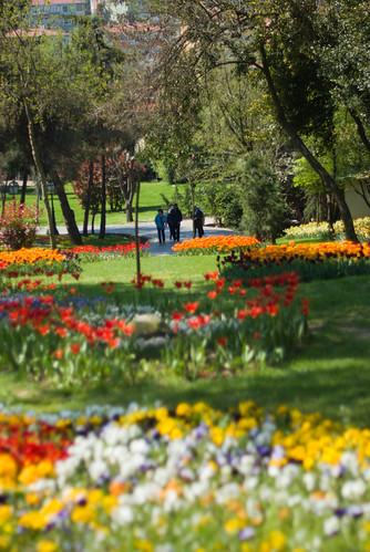 Istanbul Tulip Festival 2009, Istanbul, Pentax K10d