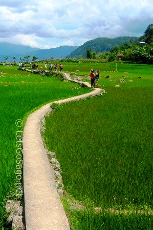 Banga-an Rice Terraces Pathway