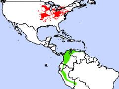 Cerulean Range Map