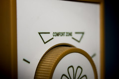 045/365 - Comfort Zone