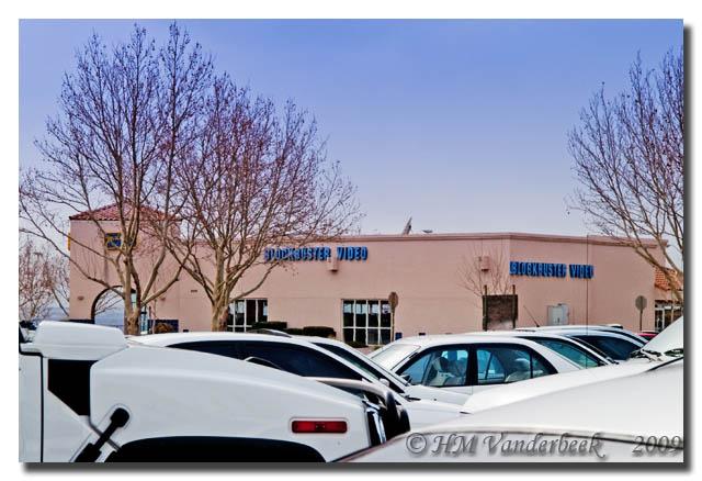 A Sea of White Vehicles