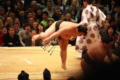 Sumo Ballet
