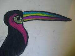 more toucans