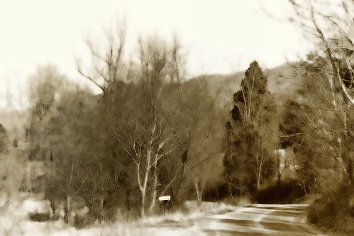 A Country Road—diffused sepia