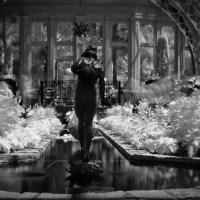 Tlactocatzine del jardín de Flandes: ¿cómo se dice creepy en español?