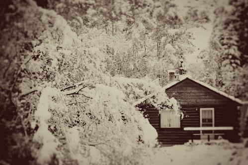 cabin by Caroline Beth
