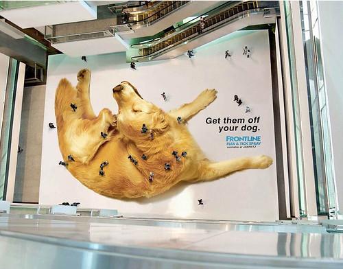 Original anuncio antiparásitos