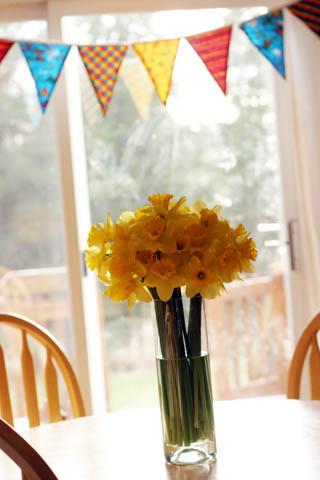 daffodils for my birthday
