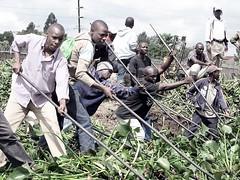 2010 nairobi dam clean up