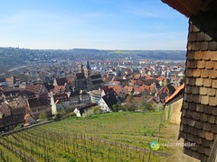 """Burg Esslingen • <a style=""""font-size:0.8em;"""" href=""""http://www.flickr.com/photos/84812658@N00/13564553543/"""" target=""""_blank"""">View on Flickr</a>"""