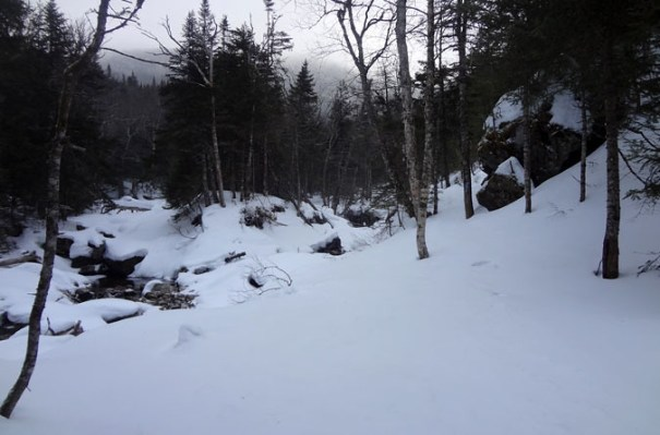 Lower Ammonoosuc Trail