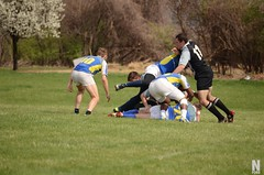 "Ruggerfest - Bombers vs Royals 17 • <a style=""font-size:0.8em;"" href=""http://www.flickr.com/photos/76015761@N03/13895187632/"" target=""_blank"">View on Flickr</a>"