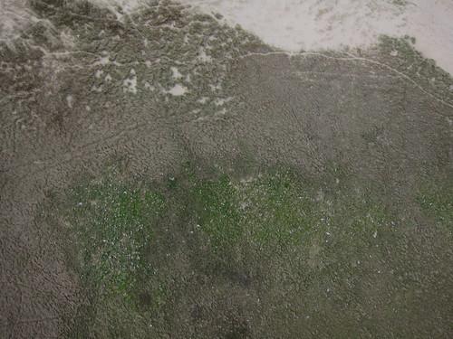 Pompevlak, Texel