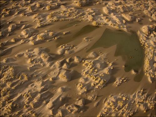 Jonge duintjes op de Hors/New dunes on de Hors, Texel