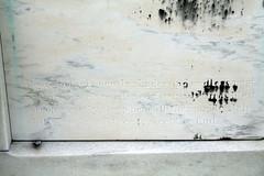 St. Vincent- Bender tablet bottom