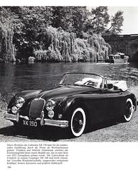 Jaguar - 188
