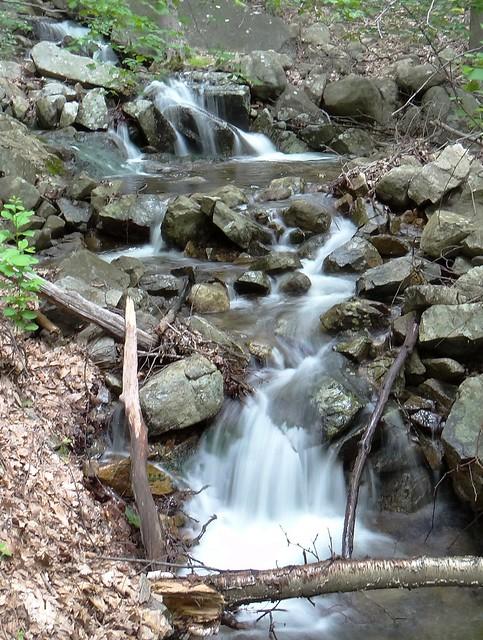 Cascades on Gyascutus Brook