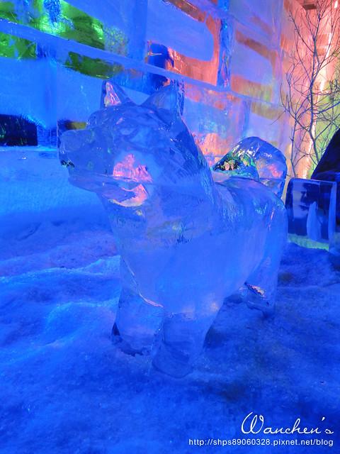 DSC 2014急凍樂園06525