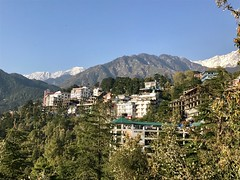 View of Dhauladhar range above McLeod Ganj, Dharmasala, Himachal Pradesh, India