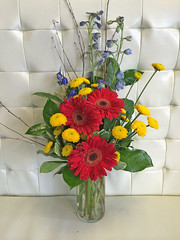 Fireworks - Shirley's Flowers & Gifts, Inc., in Rogers, Ark.