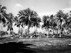 Gougna, Guam 1946