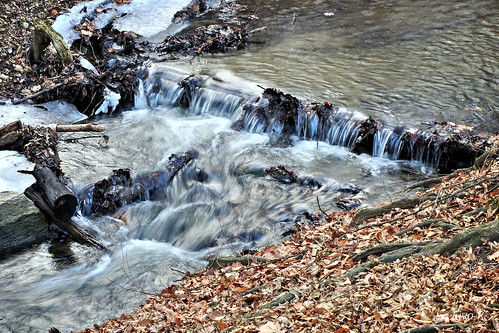 Icy stream / Jeges patak