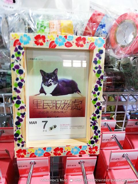 20140614華山貓咪送養_102231
