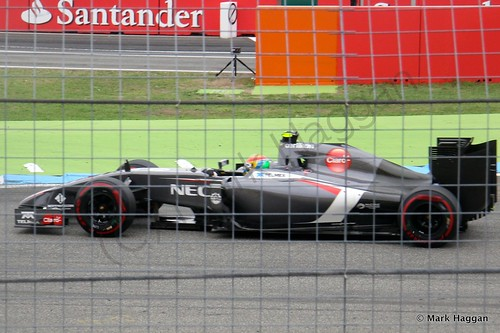 Esteban Gutierrez in the 2014 German Grand Prix
