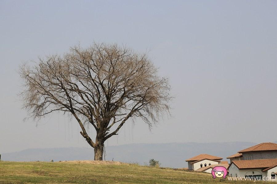 [泰國.拷艾]DVAREE渡假村.就像是來到歐洲小鎮般~附設Panacee.名流創建 @VIVIYU小世界