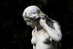 Venus (II)
