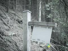 "Sauerland: Wald von Oberschledorn • <a style=""font-size:0.8em;"" href=""http://www.flickr.com/photos/84812658@N00/14589075205/"" target=""_blank"">View on Flickr</a>"