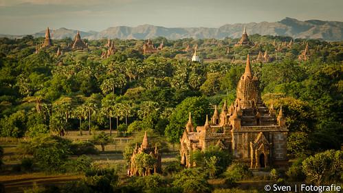 Duizende temples