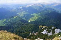 Toamna in muntii Capatanii