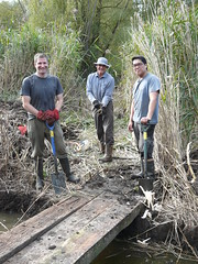 "Oxford Conservation Volunteers constructing temporary footbridge in Trap Grounds reed bed • <a style=""font-size:0.8em;"" href=""http://www.flickr.com/photos/60890513@N06/15454809538/"" target=""_blank"">View on Flickr</a>"