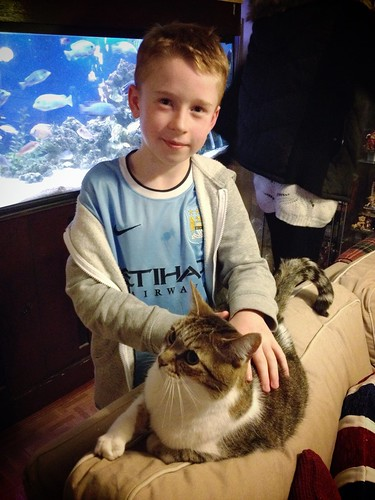 Today is all about...nephew #3 tackling his ailurophobia