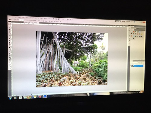 Today is all about...finally editing the holiday photos