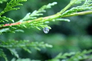 The last raindrop