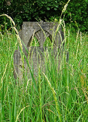Overgrown graveyard 3