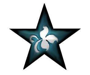 STP Star