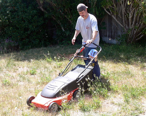 """Davey helps mow the """"lawn"""""""