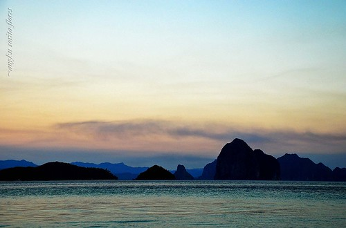 ellis island and others