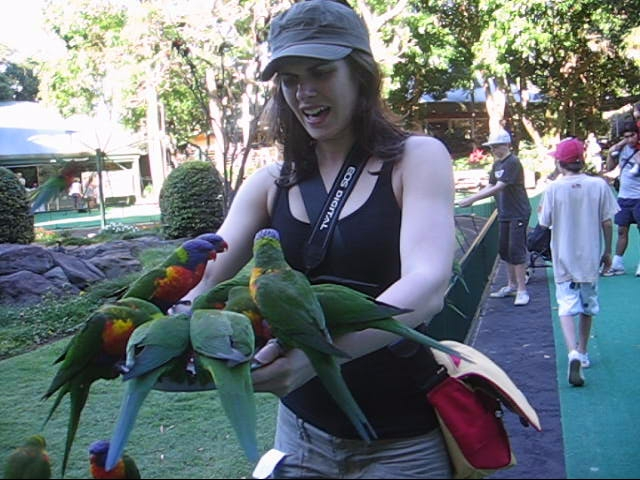 Mostly Lisa & the Rainbow Lorikeets