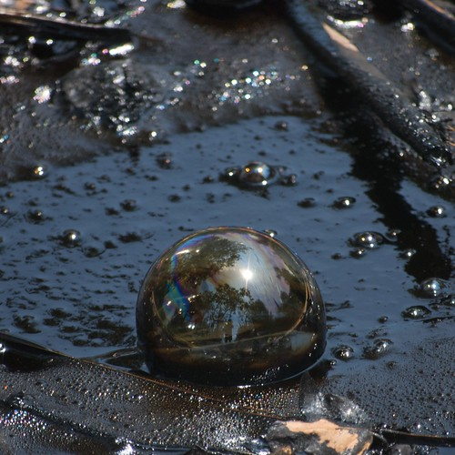 Tar Pit Bubble