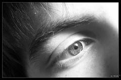 Reflejos de una mirada
